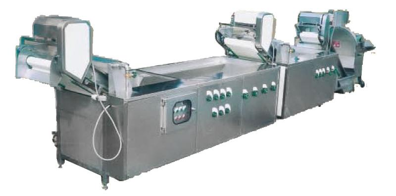 Vegetable Continuous Washer