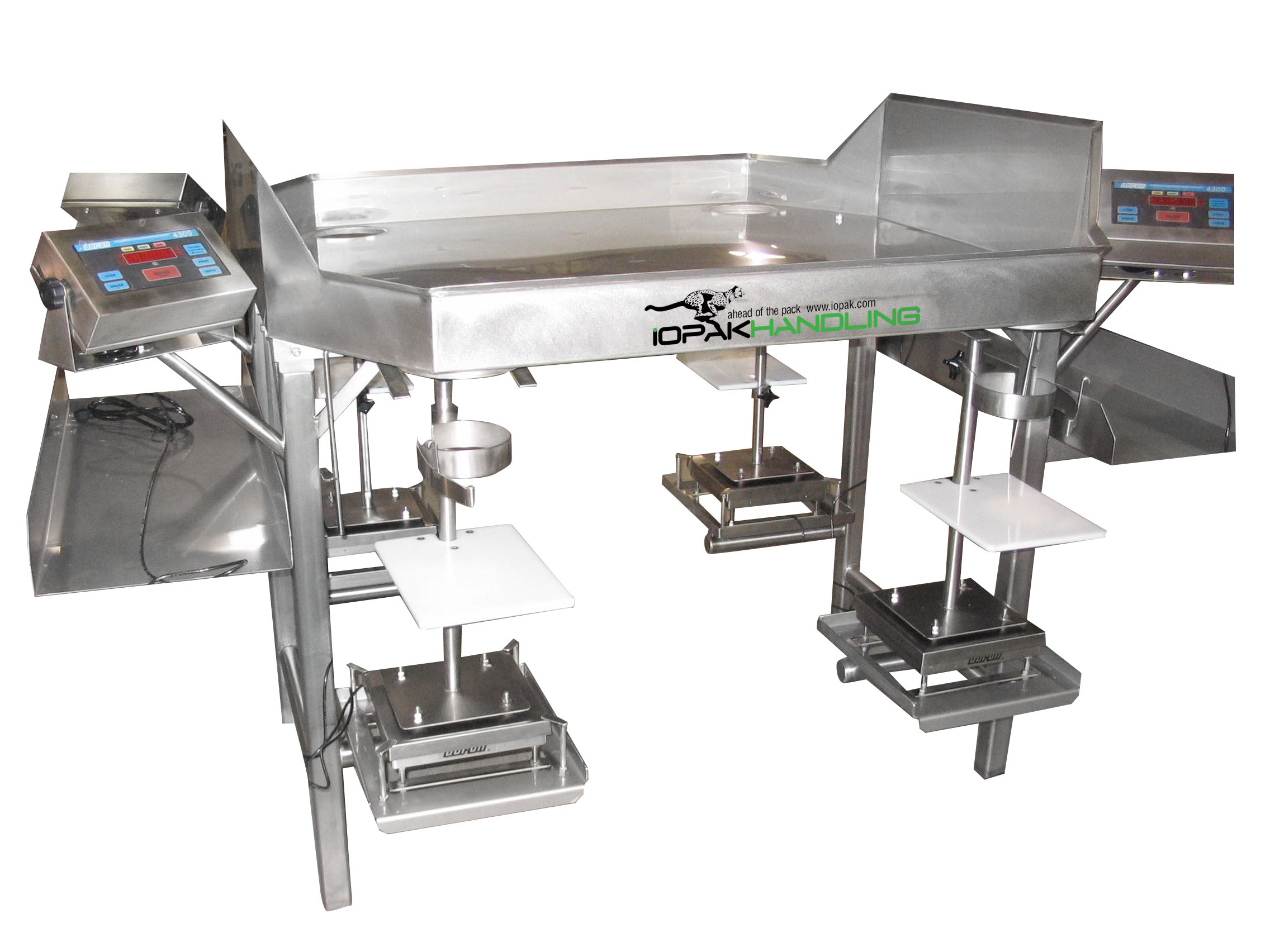 Sorting & Weighing Table (2-Person Station)